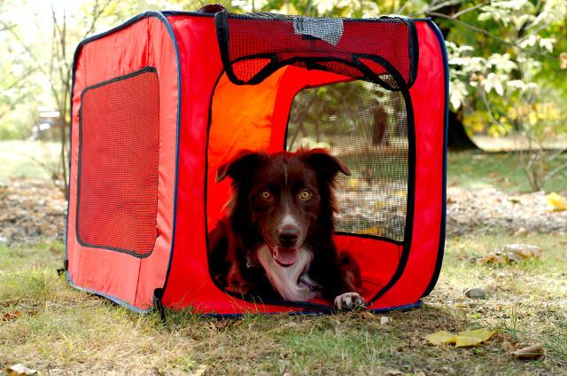 portabledogkennel_front