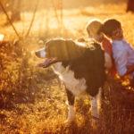 Dziecko kontra pies w przestrzeni publicznej